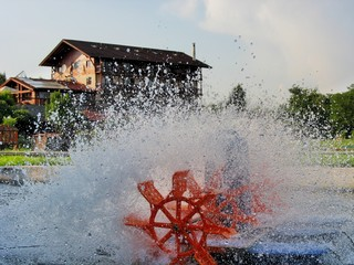 Electric paddle wheel aerator