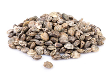 Raw Lupins Clams