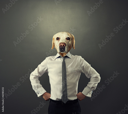 Fotobehang Dragen businessman man with dog's head