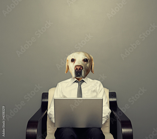 dog businessman with laptop
