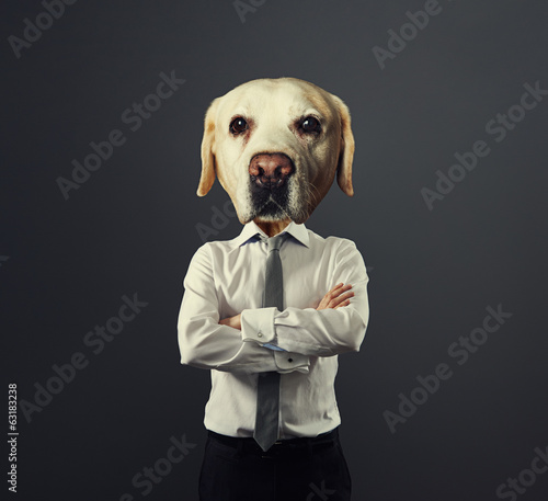 man with dog's head over grey
