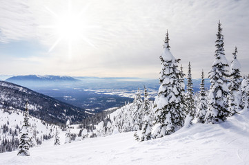 Winter Landscape on Big Mountain in Montana
