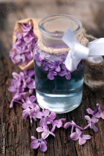 Common lilac flowers