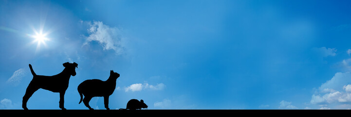 website banner - dog cat mouse - ratio 3 to 1 - g731