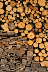 Fire wood stock for winter