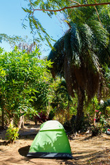 canadian tent in jungle