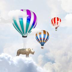 Flying rhino
