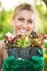 Beautiful woman planting flowers