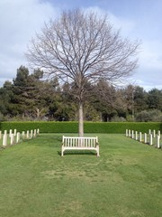 panchina nel cimitero di guerra