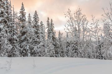 winter clouds in clour