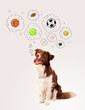 canvas print picture - Cute dog with balls in thought bubbles