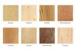 Leinwanddruck Bild - Holzarten Übersicht freigestellt
