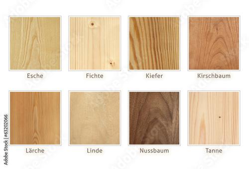 Leinwanddruck Bild Holzarten Übersicht freigestellt