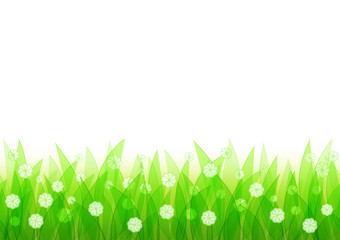 Natural seamless background