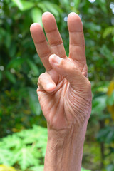 Hand gestures of senior scouts honor on nature background