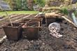 semis dans pots biodégradables