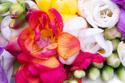 red freesia inside colorful freesia bouquet