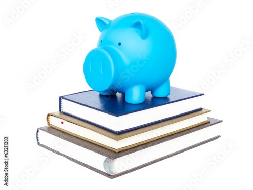 Blue piggy bank on book on  white background