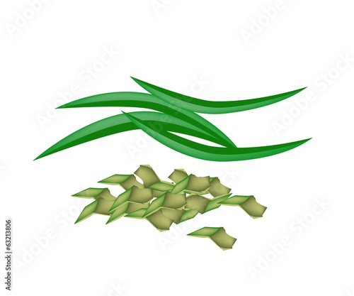 Fresh Pandan Leaves on A White Background