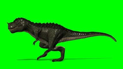 Dinosaur Tyrannosaurus T-Rex walks - green screen