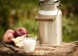 Leinwandbild Motiv frische Milch aus der Milchkanne