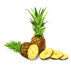 Pineapple isolated poster or emblem