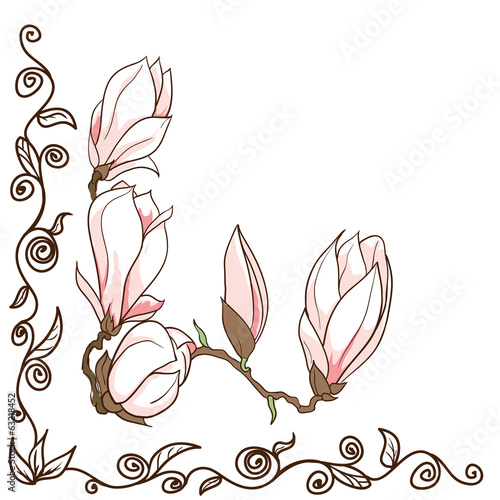 Vector hand drawn magnolia flowers - ornamental corner frame