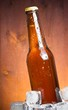 bottle of fresh beer with drops and ice, with space for text - 63219053