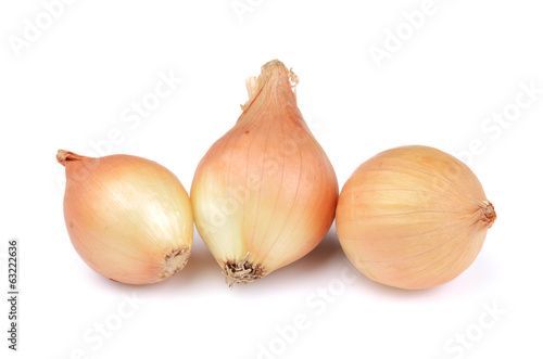 Onion vegetable on white background