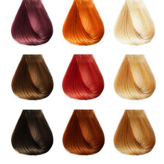 Hair Palette. Colors Set. Tints