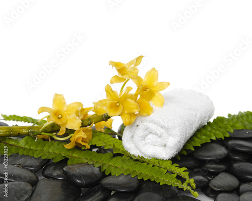 green fern and yellow orchid ,salt in glass on pebbles