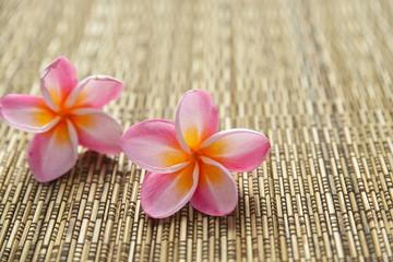 Two pink frangipani and woven wicker mat