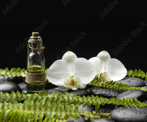 orchid with massage oil and set of green fern on black pebbles
