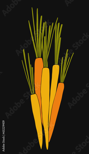 Doodle vector carrots illustration