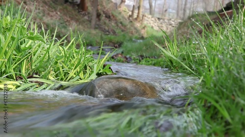 Water roll over rock in creek in forest