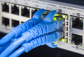 RJ45 Lan cable connected to switch