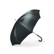Umbrella, vector illustration