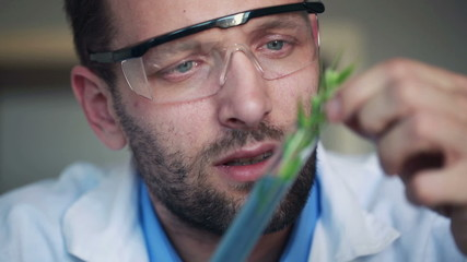 Biochemist looking at plant in test tube