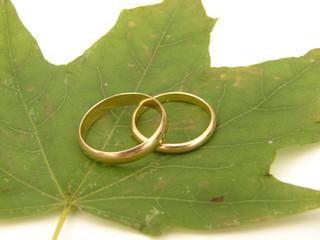 mariage alliance feuille