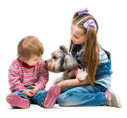 little sisters with the dog Yorkshire Terrier