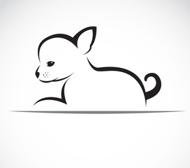 Vector image of an chihuahua puppies