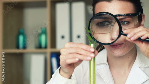 Biochemist examine plant through magnifying glass in laboratory