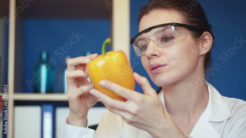 Biochemist examine fresh yellow pepper in laboratory