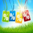 Prozent Etiketten - Wiese mit sonnigem Himmel