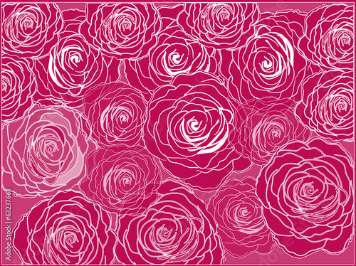 white and red rose flower background