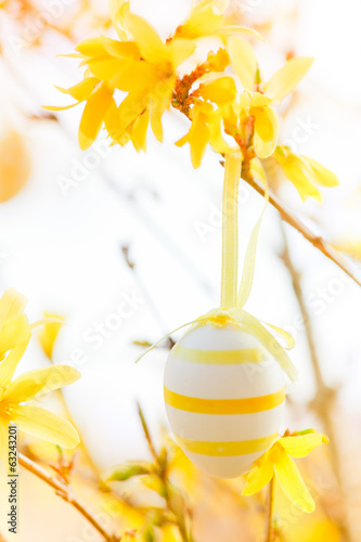 easter egg on forsythia