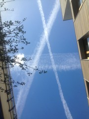 Anarchy in the sky