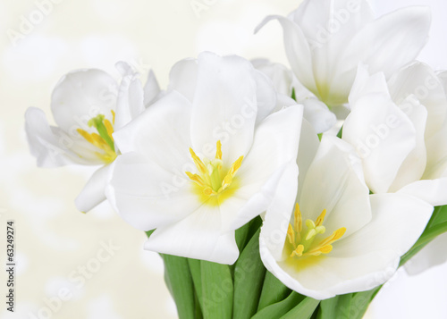Beautiful bouquet of white tulips on table on light background