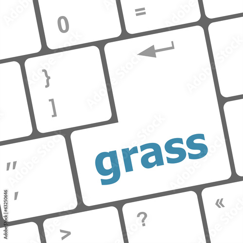 Computer keyboard button with grass button