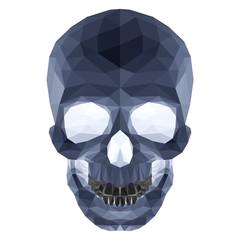 Dark crystal skull